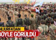 ABD'nin vurduğu YPG'liler böyle toprağa verildi!