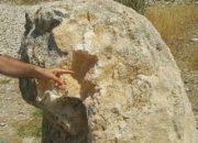 Adıyaman'da 2 bin yıllık aslan heykeli tahrip edildi