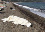 Balıkesir'de kaybolan ceset Çanakkale'de çıktı