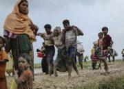 BM: Arakan'da yapılanlar etnik temizlik