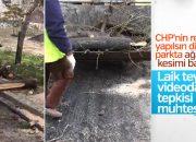 CHP'li Büyükçekmece Belediyesi ağaç katliamı yaptı