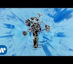 Ed Sheeran – Supermarket Flowers [Official Audio]
