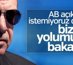 Erdoğan BBC'de AB'ye rest çekti