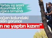 Erdoğan'ın dikkatini çekmek için ağaca çıktı
