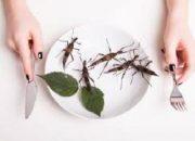 Her yıl 1 kilogram böcek yiyiyoruz