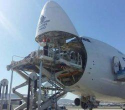 İki timsah için dev uçak İstanbul'a indi