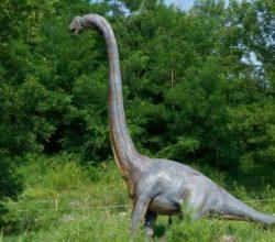 İngiltere'de dinozorların ayak izleri bulundu