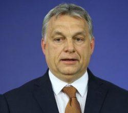 Macaristan Başbakanı'ndan Erdoğan'a övgüler
