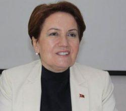 Meral Akşener'in yanındaki sürpriz isim kim?