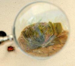Minyatür Kuran-ı Kerim sergide