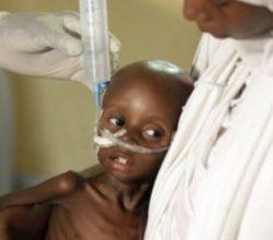 Nijerya'da 1 milyon insan açlık tehlikesi altında