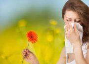 Sabah hapşırmaları bahar alerjisine işaret