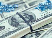 Saray'dan dolar yorumları dolar ne kadar ne olur?