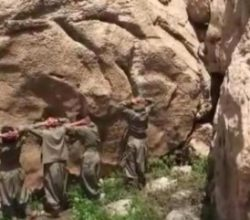 Siirt'te teslim olan 6 PKK'lı ifade verdi