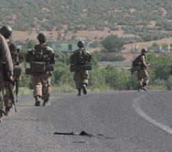 Tunceli'de 5 terörist tutuklandı